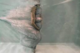 photo femme enceinte sous l'eau piscine montpellier 34