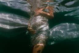 photo grossesse aquatique sous l'eau dans la mer